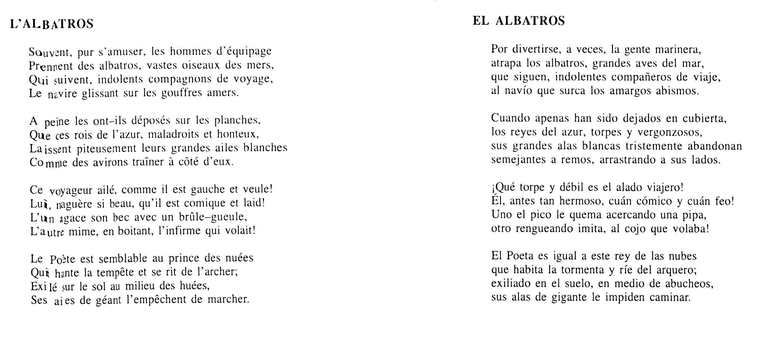 El Albatros Clase De Literatura